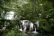Photograph of the weir on Walker Branch, a small stream which has been the focus of Dr. Mulholland's research for many years.